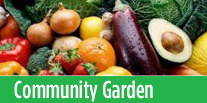 Learn about the community garden